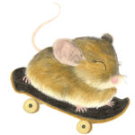 hastingsrivermousemarvgmess
