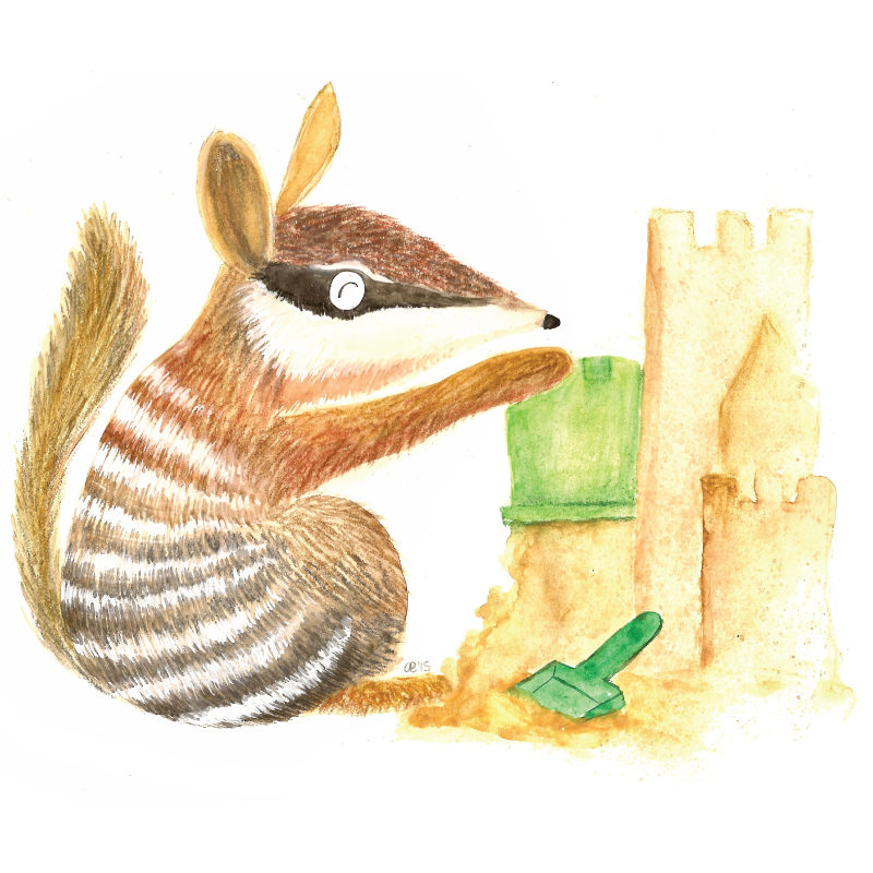 Ned the numbat removable wall sticker