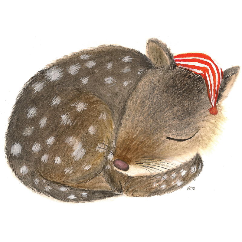 Quentin the quoll removable wall sticker