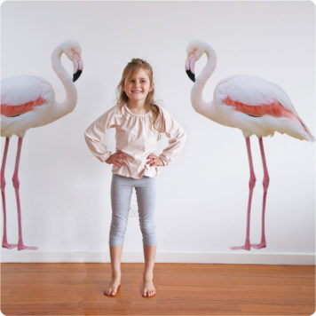 2 Real-life Flamingos removable wall stickers with a girl smiling in front