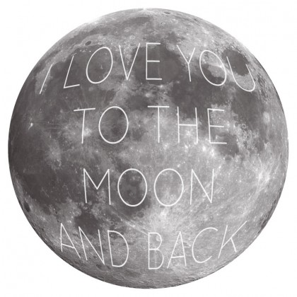 Moon and Back 3