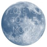 Moon and Back 5