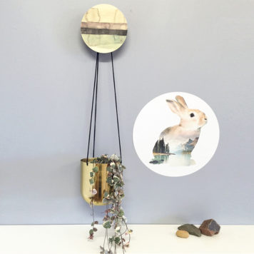 Bunny decal on grey wall with hanging plant