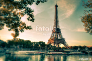 Custom Travel Mural Image - Paris France