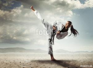 Custom Sports Mural Image - Karate