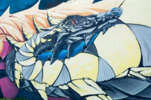 Custom Teen Mural Image - Grey Dragon