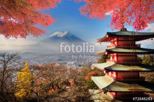 Custom Travel Mural Image - Kyoto Japan