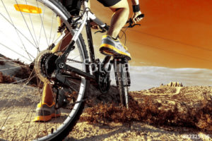 Custom Sports Mural Image - Mountain Bike Riding