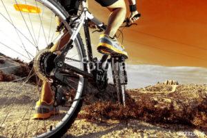 Custom Sports Mural Image - Mountain Bike Riding