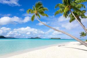 Custom Beach Mural Image - Paradise