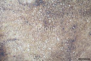 Custom Texture Mural Image - Worn Leather