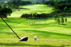 Custom Sports Mural Image - Golf