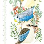 Native-birds-Height-Chart-2