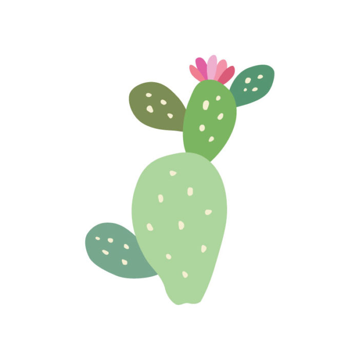Tropical Icons Cacti