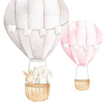 Hot Air Balloons and Animals