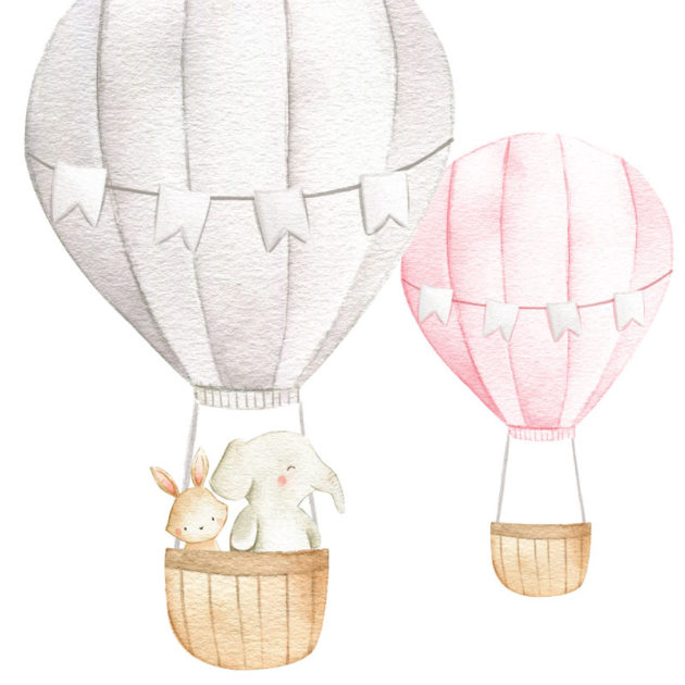 Hot-Air-Balloons-and-Animals-close-up