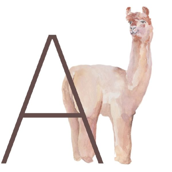 animal letters A