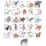 Animals-Letters-AF