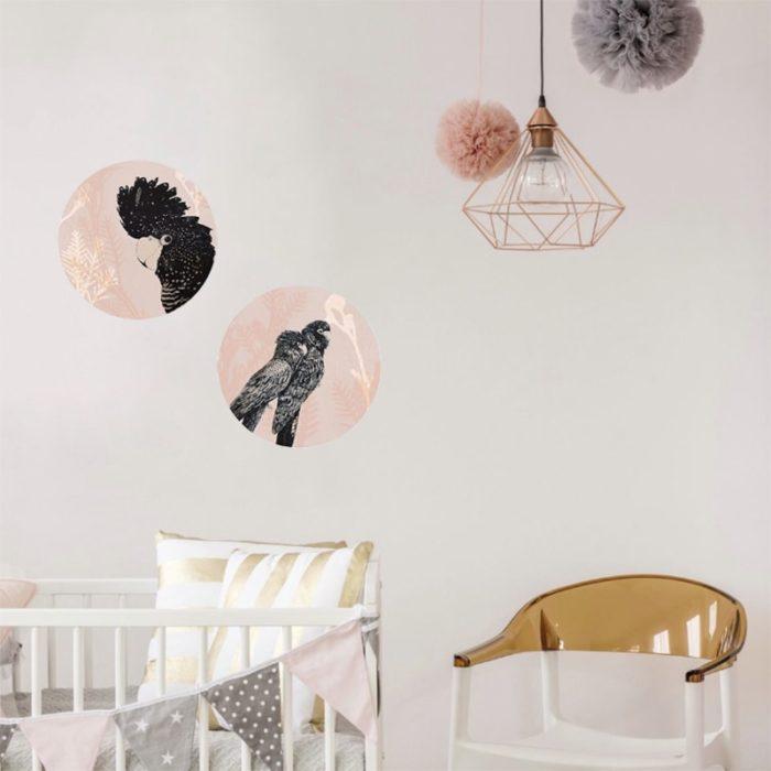 Native Spheres Nursery