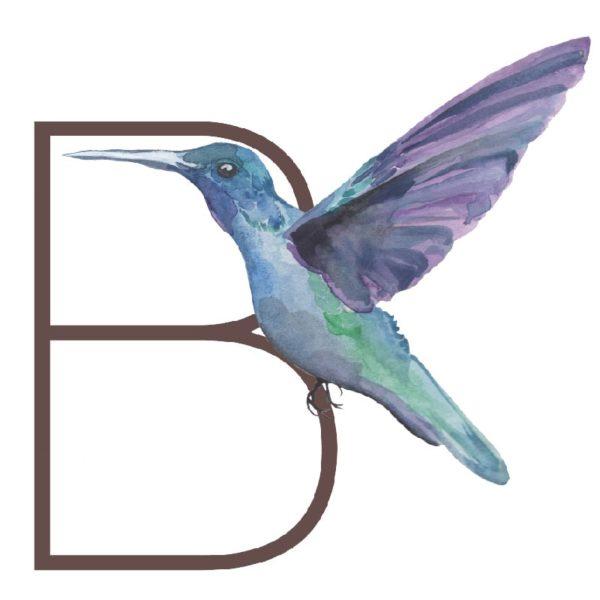 animal letters B