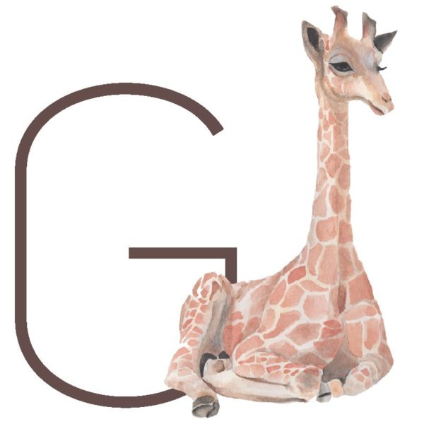 animal letters G