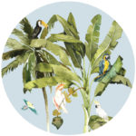 Roundabouts_Tropical-Birds_blue-sky