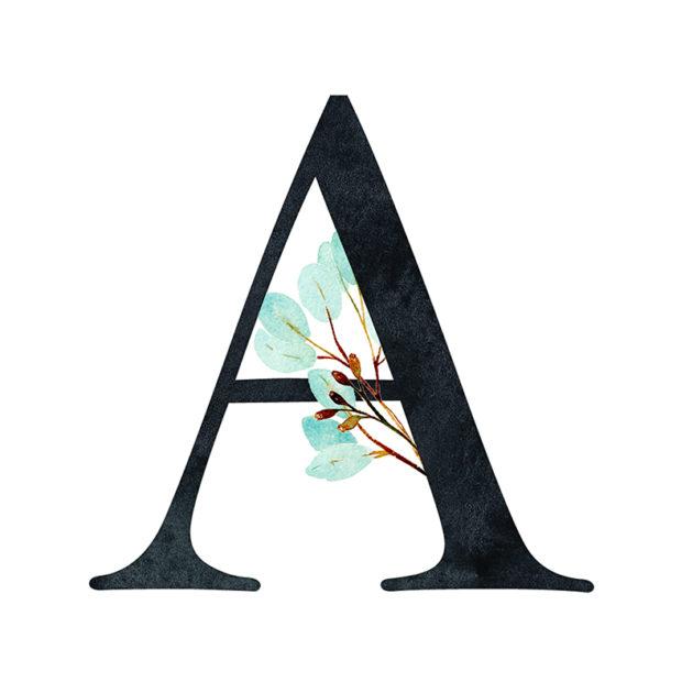 A Eucalyptus Letter
