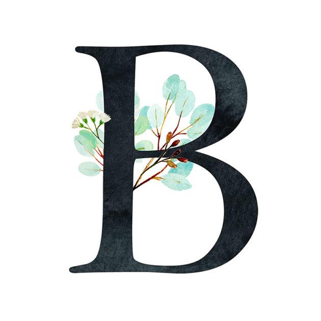 B Eucalyptus Letter