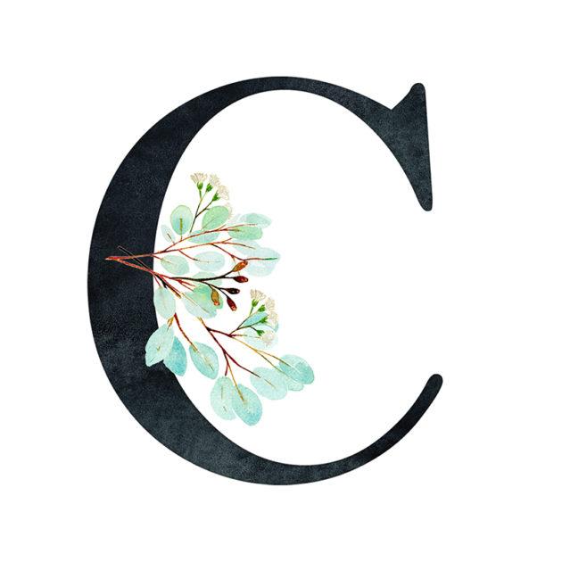 C Eucalyptus Letter
