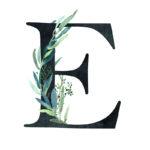 E Eucalyptus Letter