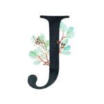 J Eucalyptus Letter