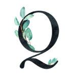Q Eucalyptus Letter