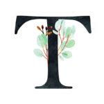 T Eucalyptus Letter