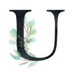 U Eucalyptus Letter