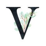 V Eucalyptus Letter