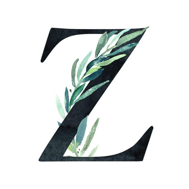 Z Eucalyptus Letter