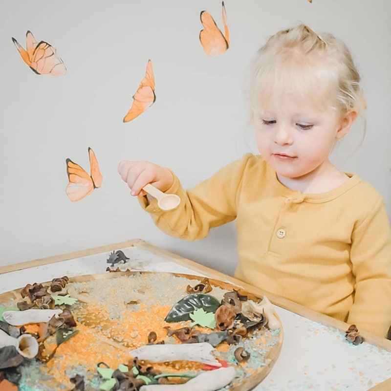 Watercolour butterflies in orange from Jasmine illustrations