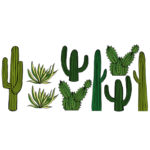 Cacti Decals_Lifestyle