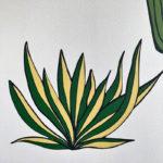 Cacti Decals_Lifestyle_5