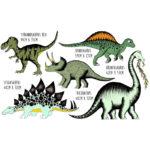 Dinosaur 5 Pack_Lifestyle_Sizes